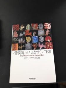 IMG_8506 (コピー)